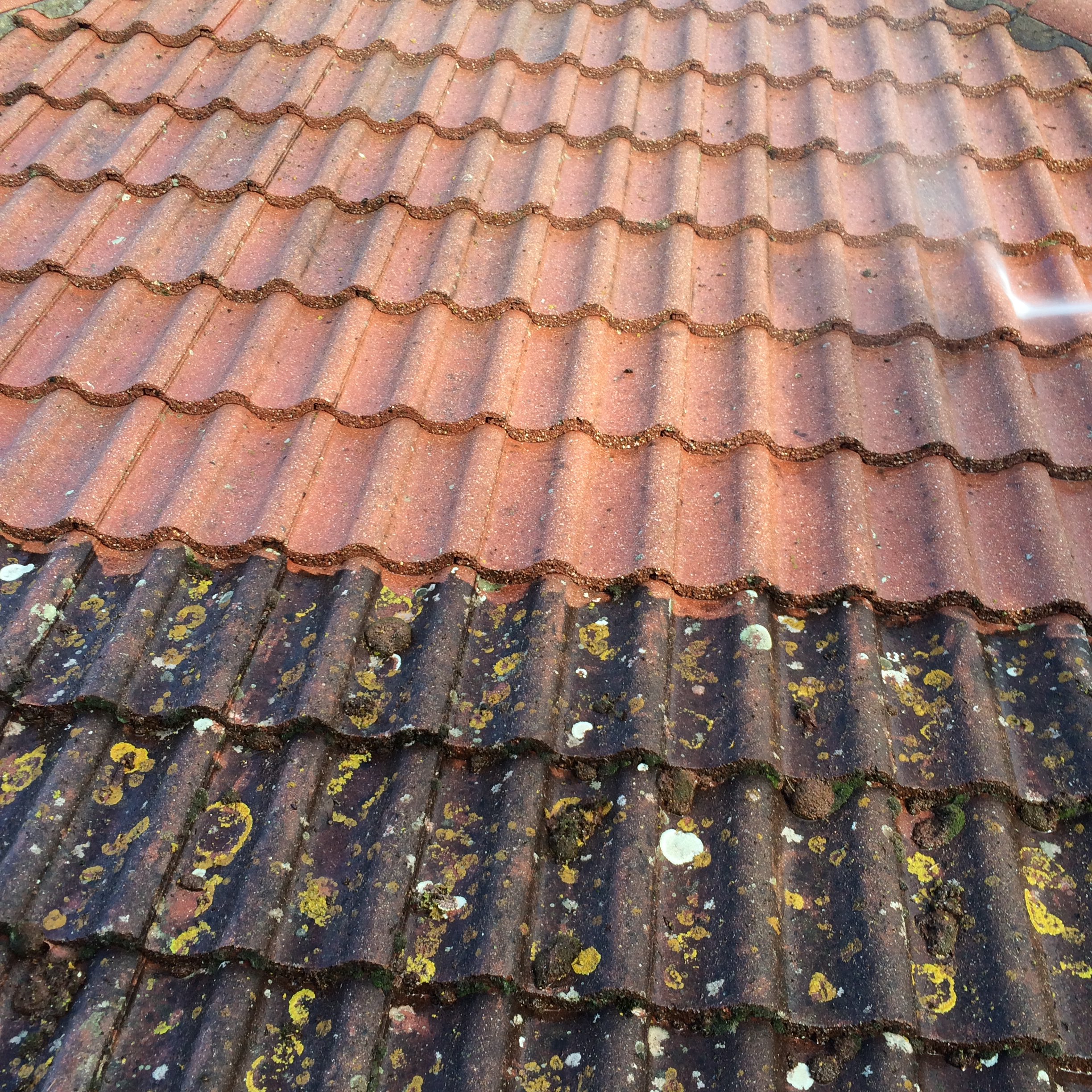 Roof Cleaning Nottingham 4