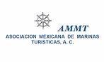 ammt-300x178.png