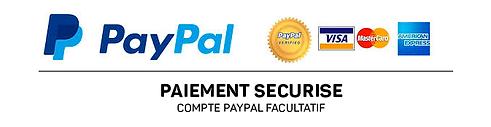 paypal_image (1).png