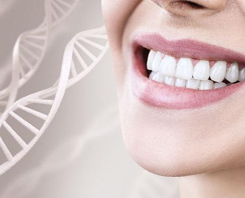 Kit dentaire Besch