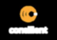 Consilient__Negative Orange-01.png