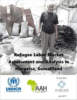 Refugee Labor Market Assesment.PNG