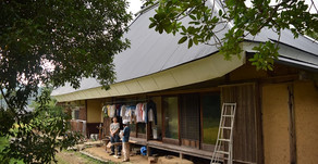 手紙の木の家