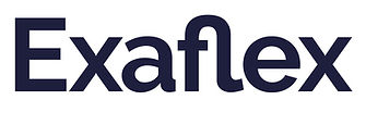 logo-exaflex (003)-1.jpg