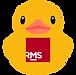 Scrub_AI_RMS_large_margin.png