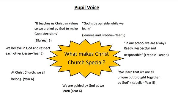 pupil voice mind map.png