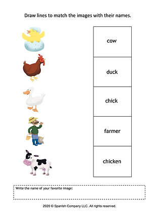 Matching Activity: Nouns & Vocabulary (Spanish & English)