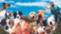 12-Dogs-of-christmas-movie-poster-Redroa