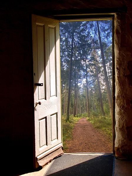 Opendoor_edited.jpg