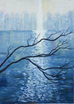 Sunlight on a frosty lake