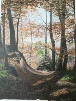 Dukeshouse wood