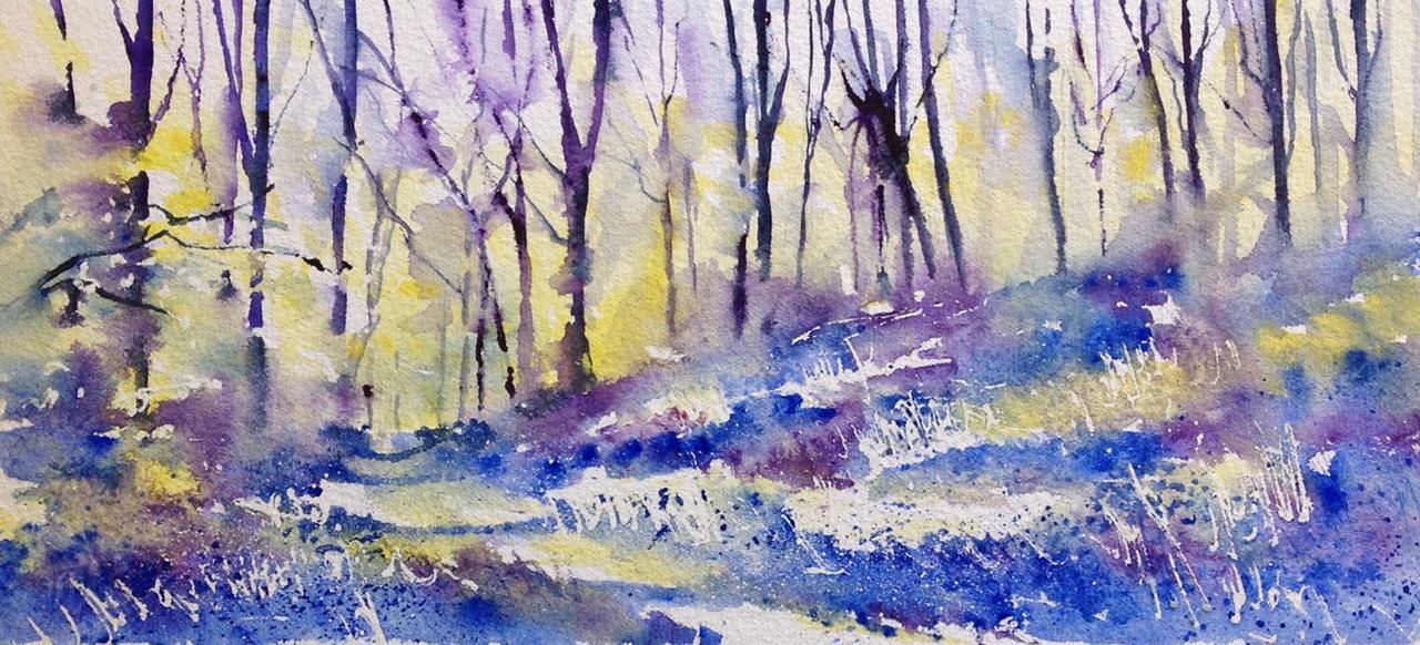A haze of bluebells