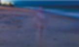 BeachFigure.png