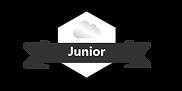 Junior-Platinum-Gradient-Black.png