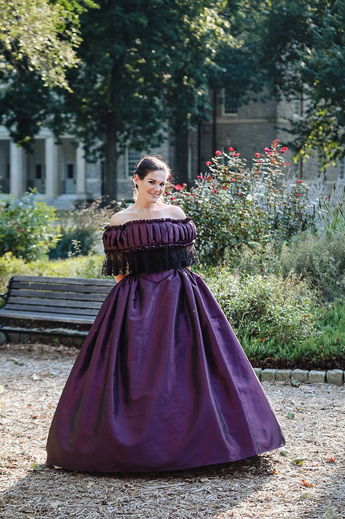 Antebellum & Civil War Era Ball Gown