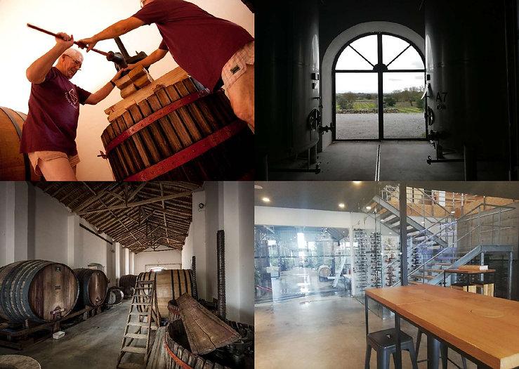 ContemporaryVs-Wines-of-Great-Tradition-