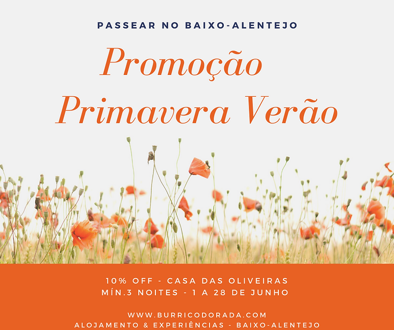 Promo - CO - Primavera Verão.png