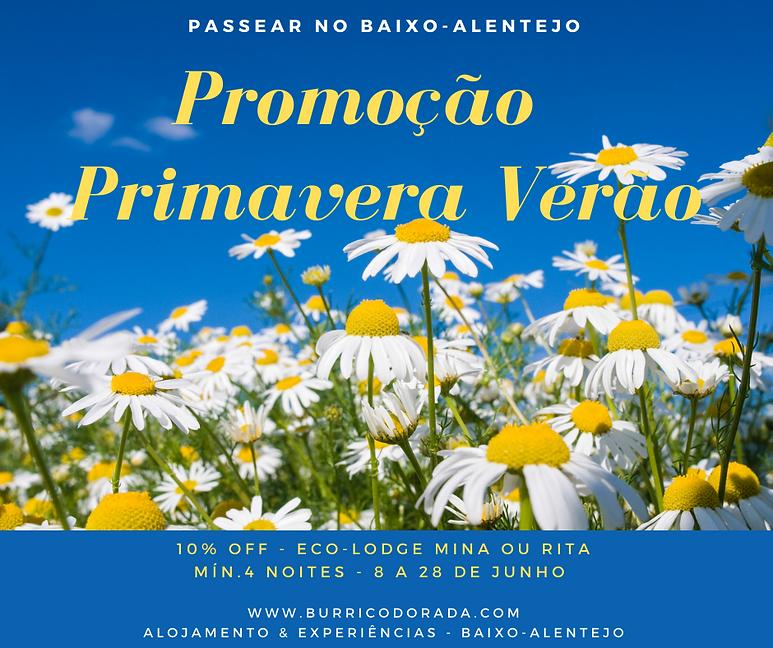 Face - PROMO ECO - Primavera Verão.png