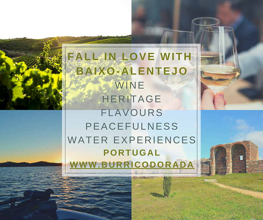 Fall in Love with Baixo-Alentejo  .png