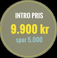 indtropris9900.png