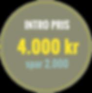 intropris4000.png