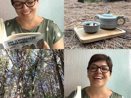Maridaje de té y literatura