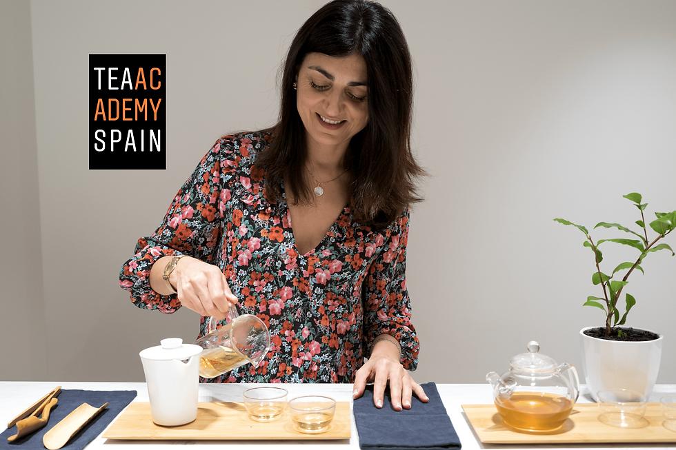 Tea Academy Spain-cursos de te.png