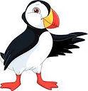 puffin-atlantique-clipart__k42021485_edi