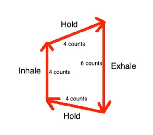Diagram of vagal breathing