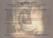 programme SDS.jpg