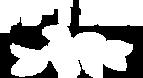 Nana-Disc-logo-transparentWHITE.png