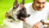bigstock-Man-And-Akita-Inu-Dog-Walk-In-6