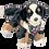 Thumbnail: Battle Buddy - Bear