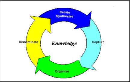 ניהול ידע ארגוני