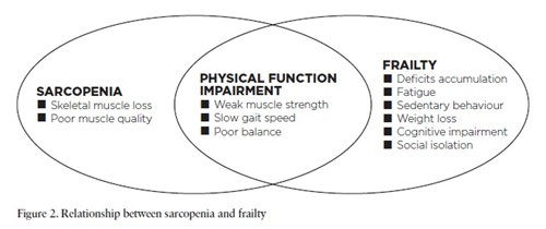 relationship-between-sarcopenia-and-frai