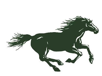 Mustangs logo green.jpg