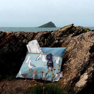 Book Cushions