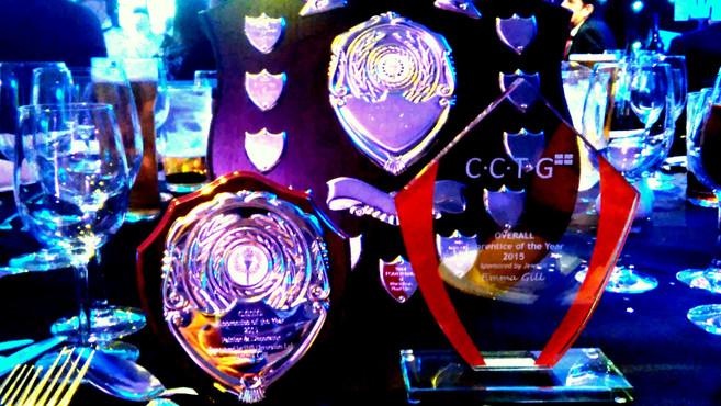 Emmagine It Decoration Awards 2015