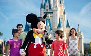 DisneyAllStar.jpg