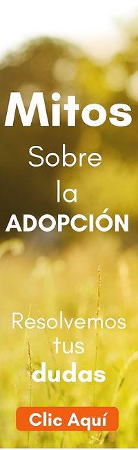 Mitos sobre la adopción