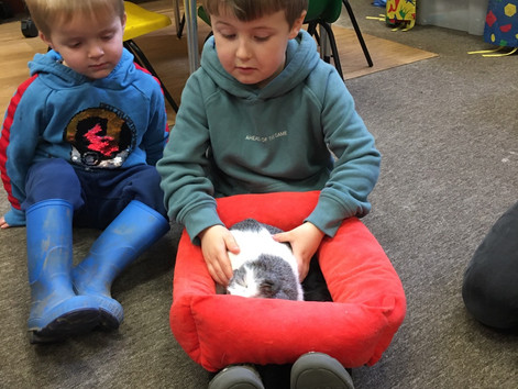 Our visit from Nikki and her Guinea Pigs 😃