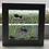Thumbnail: Picture - Fish in water scene