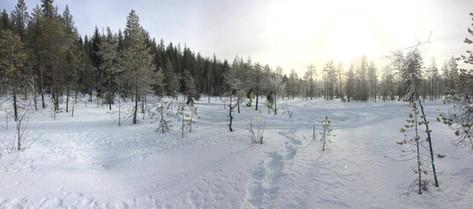 Palojärven Lomakeskus, lumikenkäilyä