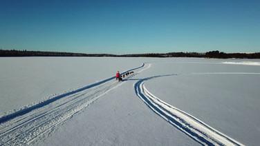 Dog Sled, Palojärven Lomakeskus