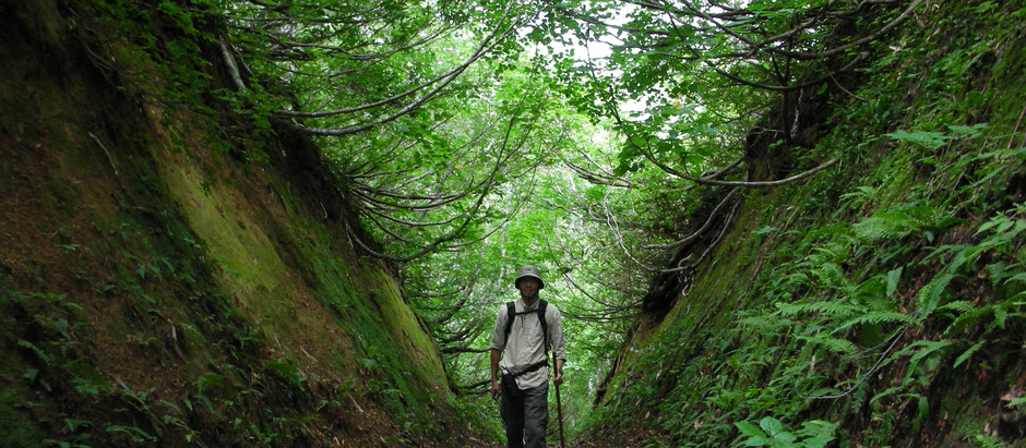The Rokujurigoe-Kaido trekking road