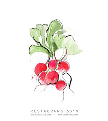 rädisa - branding.png