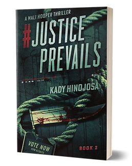 Justice Prevails - 3D.png