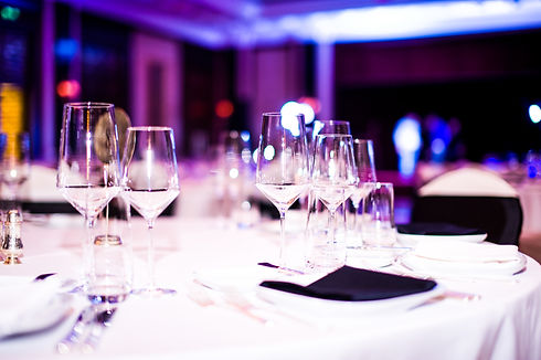 VIP party Gala dinner.jpg
