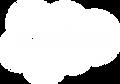 salesforce-logo-white.png
