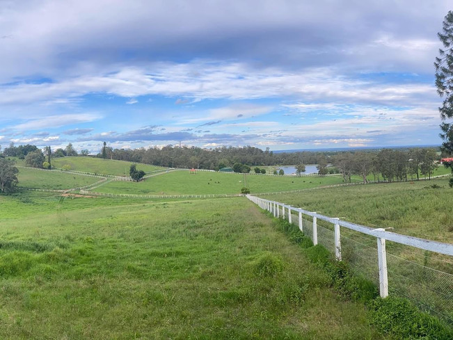 Some of our beautiful paddocks